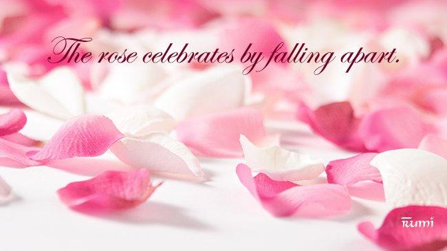 Celebrating Falling Apart