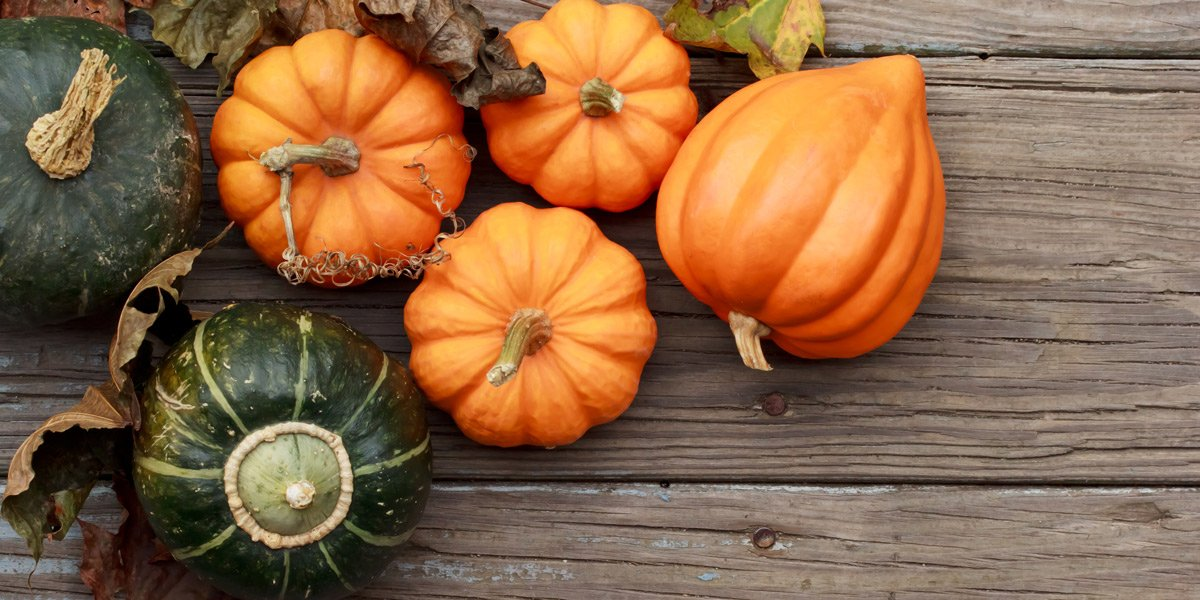 5 Reasons To Eat More Pumpkin