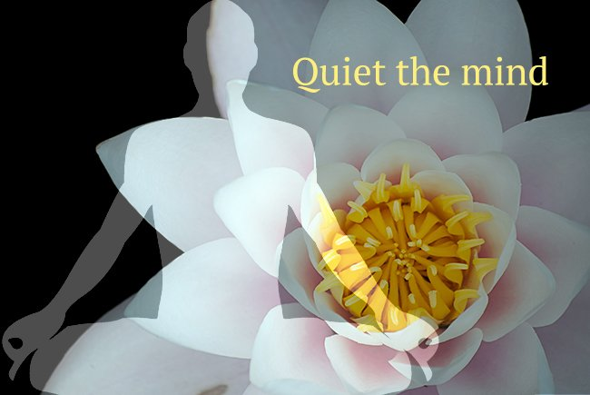 Yoga and Meditation Tips to Quiet the Mind