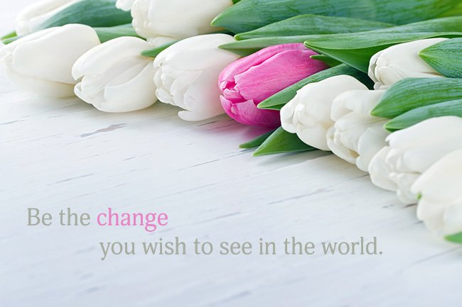 Inspirational Thought – Be The Change You Wish to See in The World