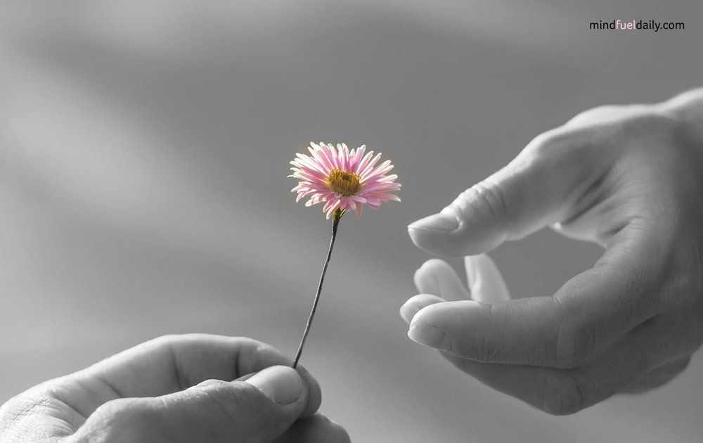 10 Ways to Practice Compassion Throughout Your Day